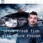 Shock Fresh<BR>WordPress
